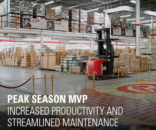 rawlings case study, peak season fulfillment, ecommerce